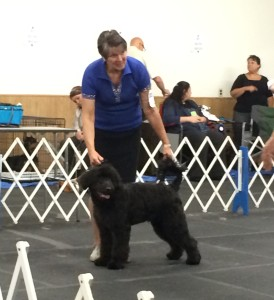 Odin's first show